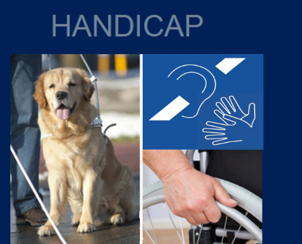Handicapdon.jpg